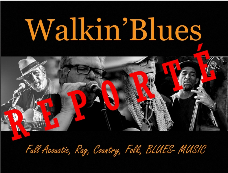 Walkin_blues_projet